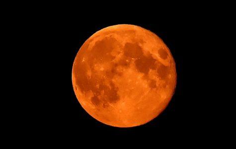 Blood Moon Rare Sight