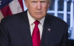 President Donald J. Trump's Official Portrait. Photo courtesy of: www.whitehouse.gov