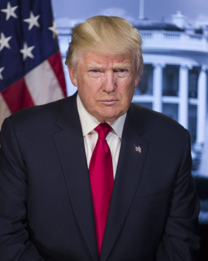 President Donald J. Trump's Official Portrait. Photo courtesy of: www.whitehouse.gov